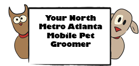 Atlanta dog groomer
